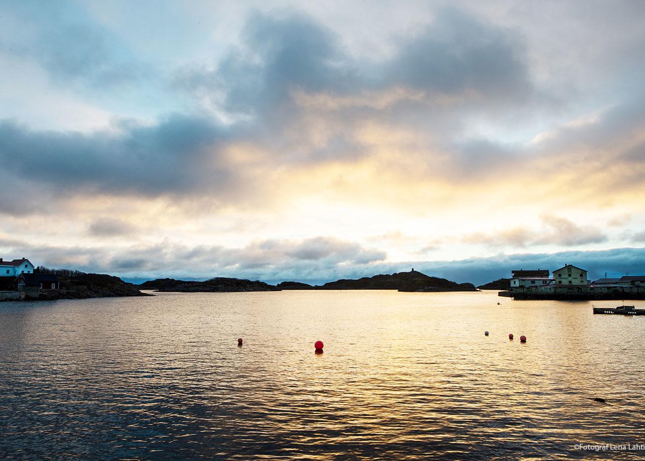 mörkertid, hav med sol, skymning, Henningsvær, Lofoten, Norge