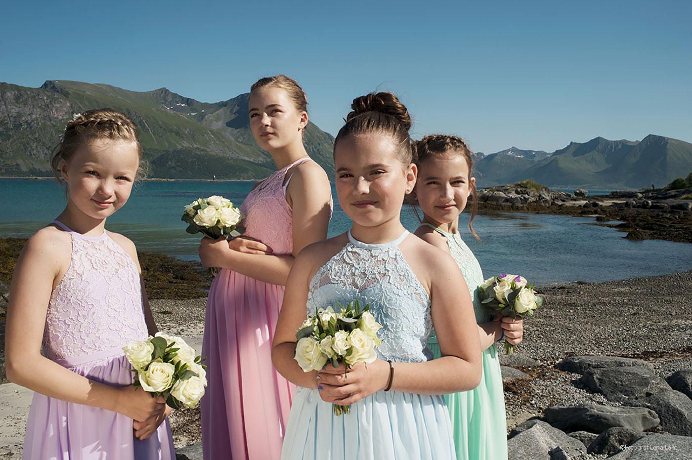 brudnäbbar Lofoten